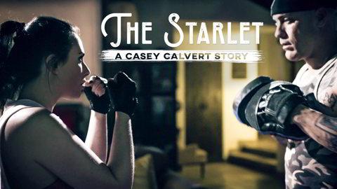 Casey Calvert - The Starlet: A Casey Calvert Story - pure taboo coupone